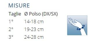 PHYLO® 12 - Polsiera rigida